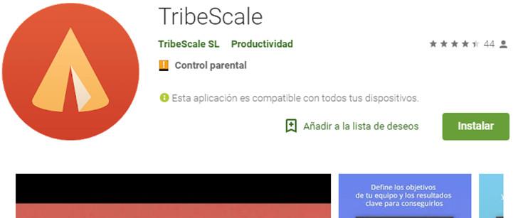 tribescale - circulantis
