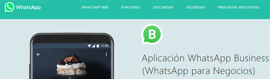 whatsapp business - circulantis